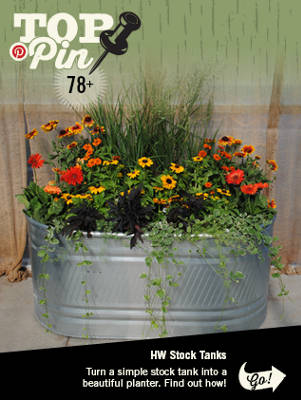 Top Pinned Item - Make a Beautiful Stock Tank Planter - Nav Ag